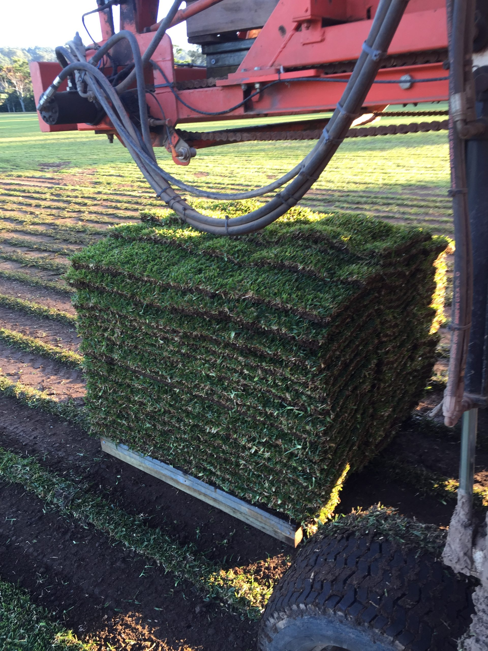 Turf Delivered Image