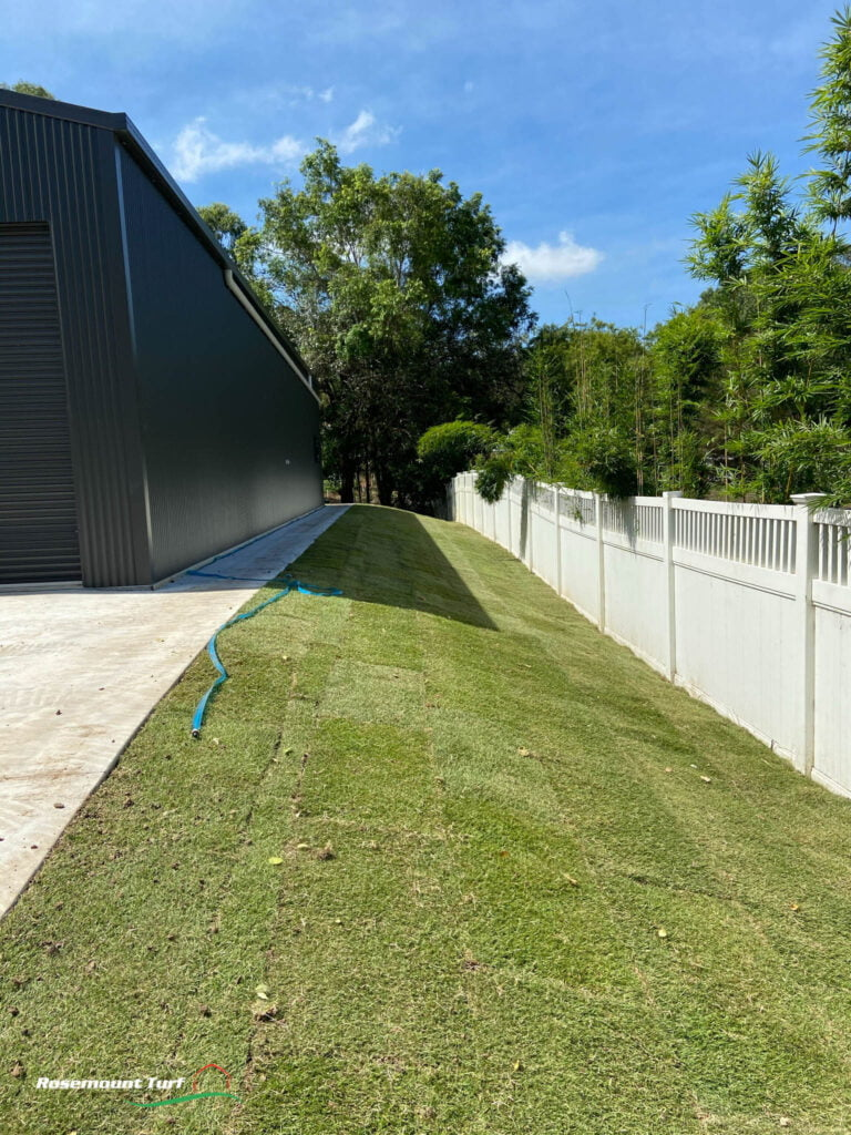 Mooloolah Valley After